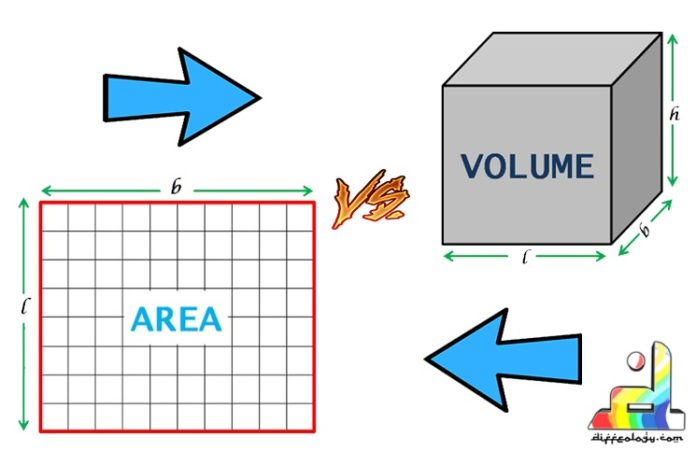 difference between area and volume