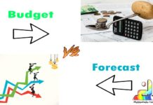 Difference Between Budget and Forecast