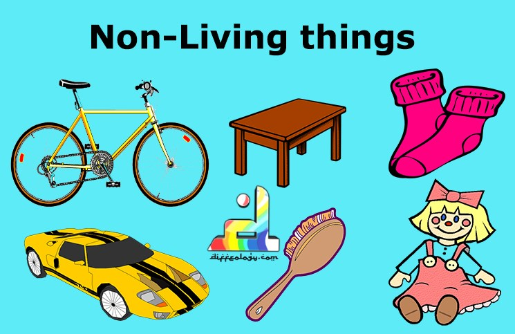 Non Living Things