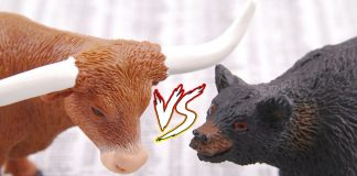 Difference Between Bull and Bear Market