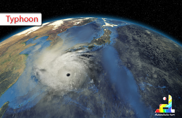 What is Typhoon